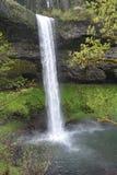 Wizerunku 2 spadków Południowi przepływy z lawowej falezy, srebro Spadają stanu park, Oregon Fotografia Royalty Free