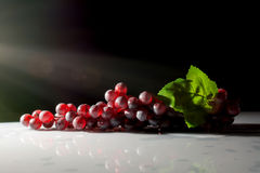 Wiązka winogrona w słońcu na zmroku Fotografia Royalty Free