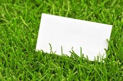 Wizytówka w trawie Obraz Stock