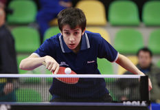 wjttc 2008 de Madrid Photos libres de droits