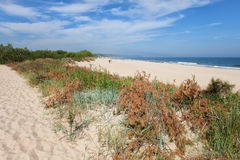 Wladyslawowo Beach at Baltic Sea in Poland Stock Image