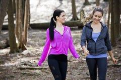 wlaking在森林中间的两名妇女 免版税库存图片