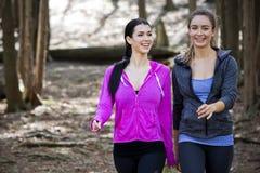 wlaking在森林中间的两名妇女 免版税图库摄影