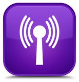 Wlan network icon special purple square button Royalty Free Stock Images