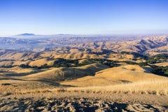 Wlec wśród złotych dolin i wzgórzy przy zmierzchem misja szczyt, widok w kierunku doliny i Mt Diablo, Zdjęcie Stock