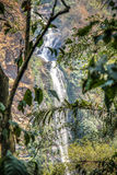 Wli waterfall in the Volta Region in Ghana Royalty Free Stock Photography