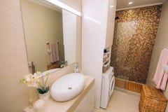 Wnętrze łazienka Wewnętrzny projekt Łazienka w a Zdjęcie Royalty Free