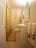 wnętrze łazienki Obraz Stock