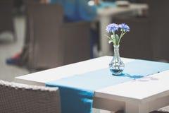 Wnętrze caffee, restauracja lub jadalnia z błękitnymi kwiatami obraz royalty free