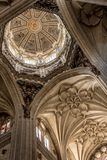 Wnętrze Salamanca katedra fotografia royalty free