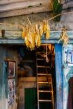 Wnętrze stara śpiżarnia Dom rolnicy wnętrze Galicia Obraz Stock