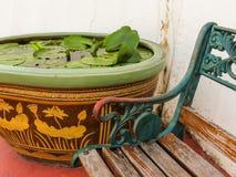 Wnętrze Tajlandzki podwórze zdjęcia royalty free