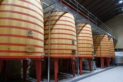 Wnętrze wino loch Rioja dzwonił Marques De Riscal z wielkimi baryłkami dokąd winogrona rzucają tak, że Zdjęcie Stock