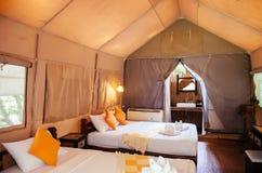 Wnętrze luksusowy campingu kurort w natura lesie, glamping zdjęcie royalty free