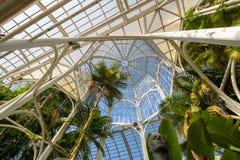 Wnętrze szklarnia przy Curitiba ogródem botanicznym - Curitiba, Parana, Brazylia Fotografia Stock