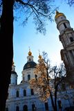 Wniebowzięcie lub Dormition Katedralny Ortodoksalny kościół Kharkiv, Ukraina, zima dzień z błękitnym chmurnym niebem i czarną drz zdjęcie royalty free