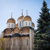 Wniebowzięcie katedra Kremlin moscow Rosji Zdjęcie Royalty Free