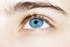 Wnikliwa spojrzeń niebieskich oczu chłopiec Obrazy Royalty Free