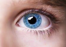 Wnikliwa spojrzeń niebieskich oczu chłopiec zdjęcia royalty free