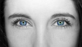 Wnikliwe spojrzeń niebieskich oczu kobiety Fotografia Stock