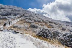 Wnter Hike to Mt. Kuju. Hikers trek the Kuju mountain range in Aso-Kuju National Park in Oita, Japan, near the Makinoto Pass on a sunny day with snow stock image
