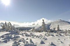 Wnter-Landschaft in den polnischen Bergen, sonniger Tag Stockfotos