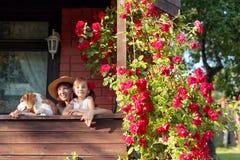 Wnuczka, babcia i ich pies na werandzie wioska dom, zdjęcia royalty free