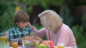 Wnuk pokazuje babci uroczej figlarki, ściska ślicznego zwierzęcia domowego, nowy członek rodziny zbiory wideo