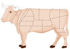 wołowiny mapa ilustracja wektor