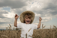 Wo Brot kommt Lizenzfreie Stockfotografie
