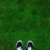 Wo ich stehe: grünes Feld Lizenzfreie Stockfotografie