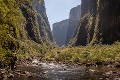 Wołowa rzeka przy Canion Itaimbezinho, Aparados da Serra Nat parkiem, - Obraz Stock