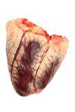 Wołowiny serce Zdjęcie Stock