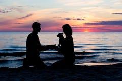 Wo zaludnia siedzi przy morzem bałtyckim z psem Światło słoneczne i fala obraz stock