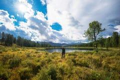 Woamn See in den Altai-Bergen lizenzfreies stockbild