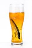 Wobbler del cebo de pesca en vidrio con la cerveza Fotografía de archivo