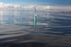 Wobbler on the fishing line Royalty Free Stock Images