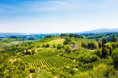 włochy Toscana tradycyjnego krajobrazu Obraz Stock