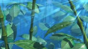 wod krople na liścia pojęcia romantycznym tle ilustracji
