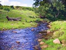 woda bieżąca Fotografia Royalty Free
