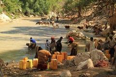 Woda: ciekły złoto ale wodny color-1 Obraz Stock