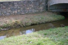 Woda i most Obrazy Stock