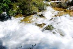 Woda, kamień, drzewa Obraz Royalty Free