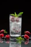 Woda mineralna z jagodami Zdjęcie Royalty Free