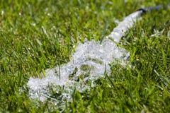 Woda od wąż elastyczny na trawie Obraz Stock