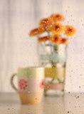 Woda opuszcza z kawowym lisiątkiem i kwiatem (ciepły brzmienie obrazek) Zdjęcie Royalty Free