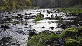 Woda płynie w rzece nad skałami zbiory