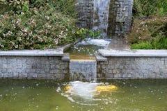 Woda płynie przez granitowych kroków Fotografia Stock