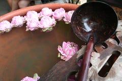 Woda pitna która zrobił od kokosowej skorupy Obraz Stock