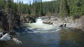 Woda przy dnem kaskada w skalistych górach zdjęcie wideo